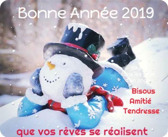 2019 : Les cartes de bons vœux reçues entre nous... Fb_img30