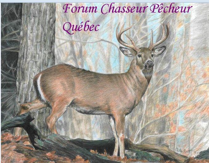 chasseur et pecheur du quebec