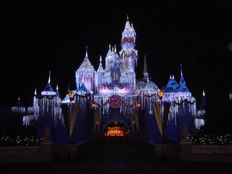 Vos plus belles photos de Disneyland Resort Dsc00311