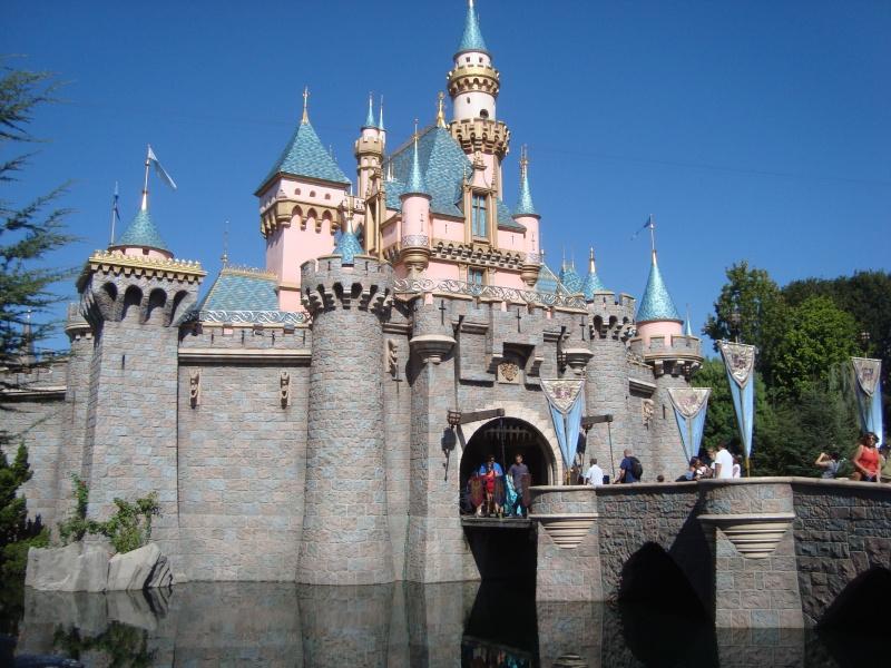 Vos plus belles photos de Disneyland Resort Dsc09720