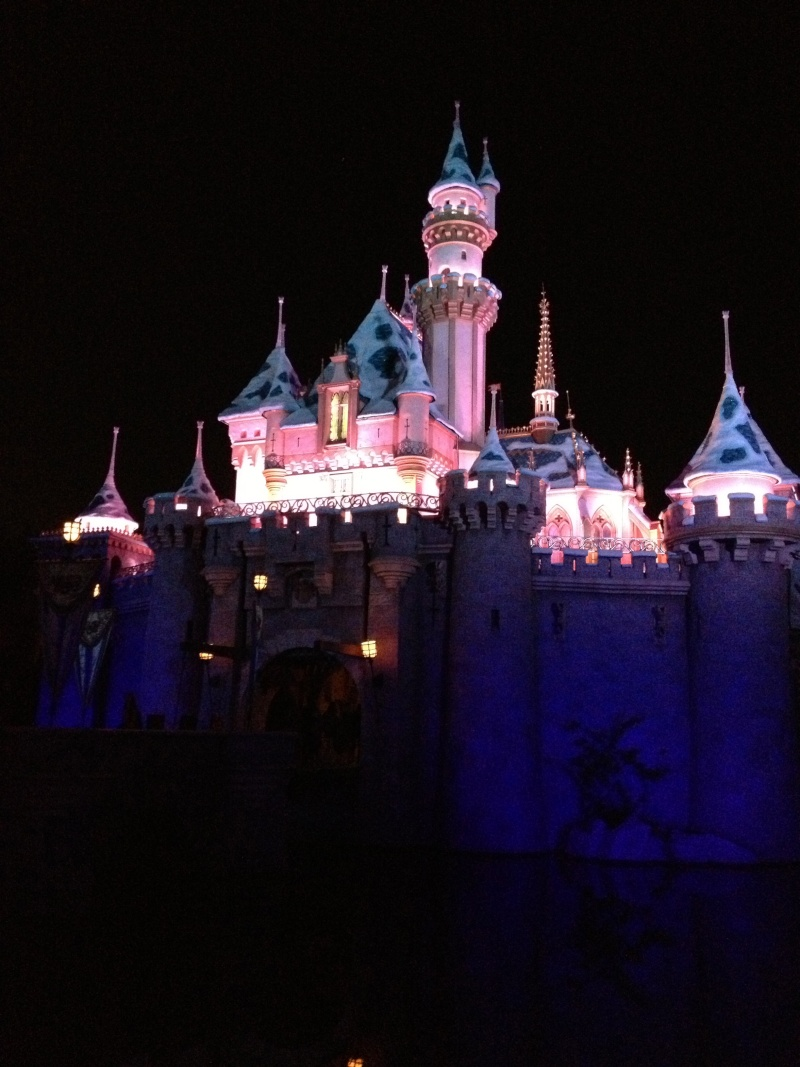 Vos plus belles photos de Disneyland Resort Img_0811