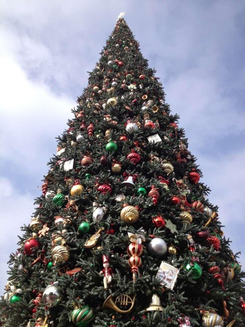 Vos plus belles photos de Disneyland Resort Img_1013