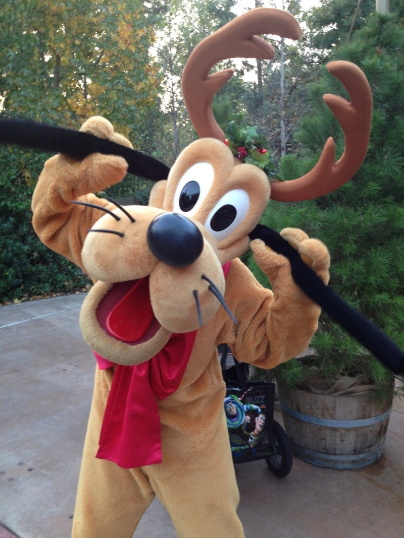 Vos plus belles photos de Disneyland Resort Img_1014