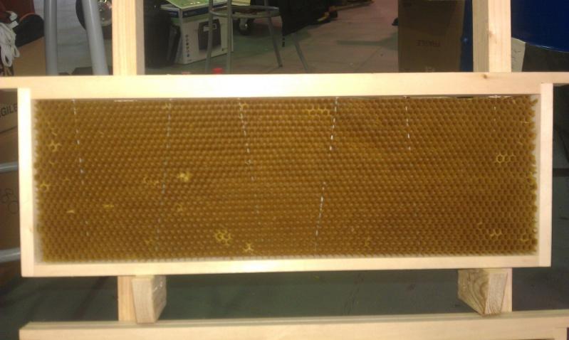 Avantages et inconvénients des ruches Warré. Imag1112