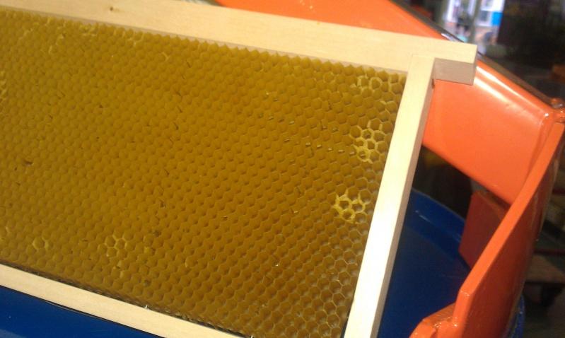 Avantages et inconvénients des ruches Warré. Imag1118