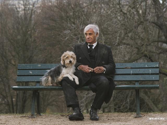 Знаменитости и собаки (фото). 12702_10