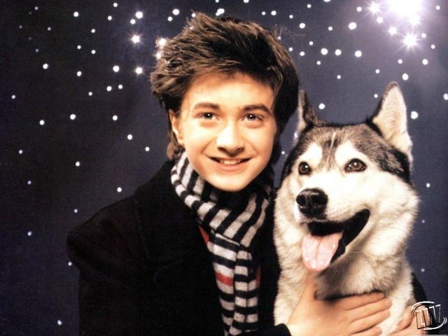 Знаменитости и собаки (фото). Daniel10