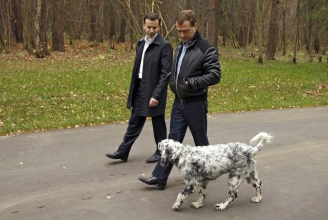 Знаменитости и собаки (фото). Mos46_10