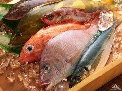 Спорная тема: от рыбы польза или вред? 12367110