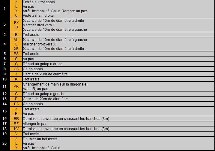 équitation classique- Galop 5 Glop510