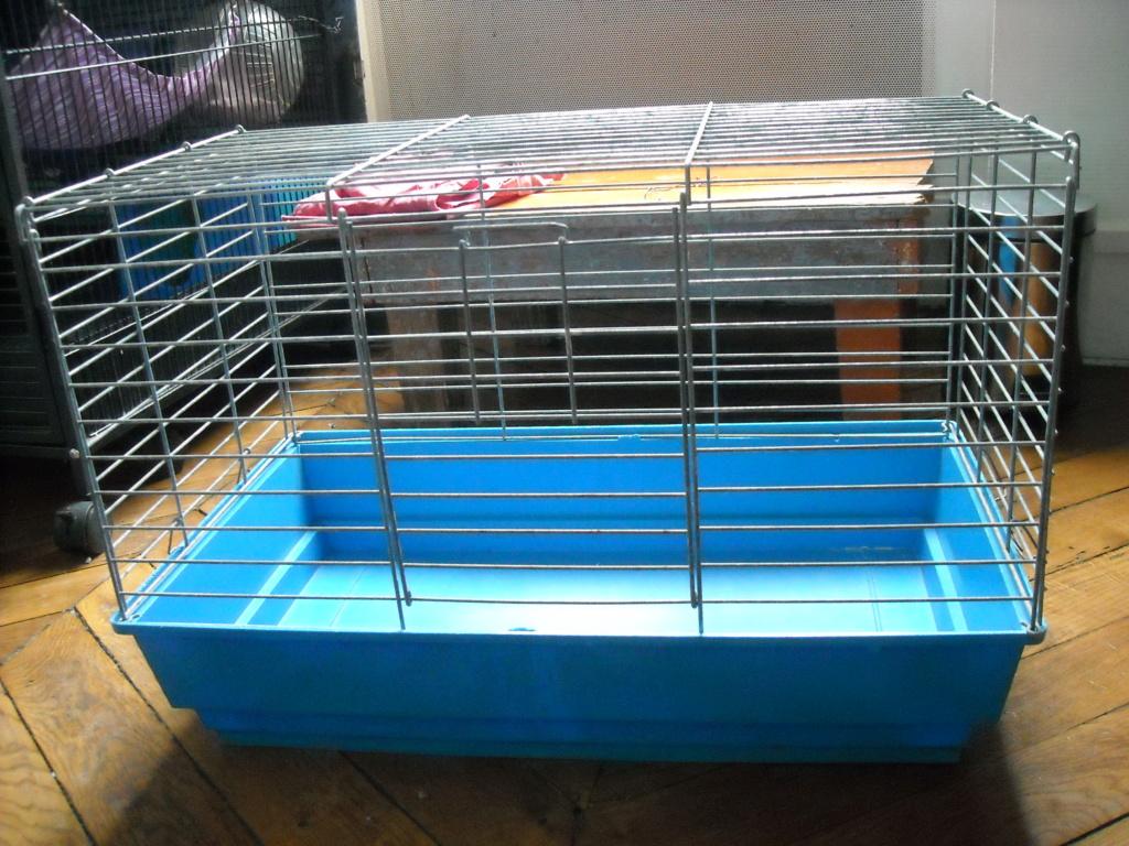vends cages pliables Dscn4616