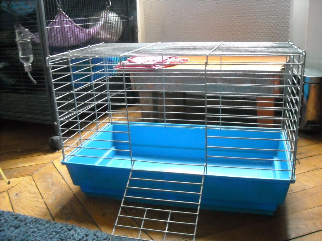 vends cages pliables Dscn4618