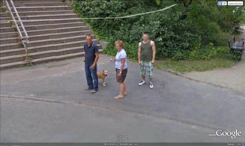 STREET VIEW:les chiens domestiques dans les cours ou en laisse dans les rues !  Sans_t11