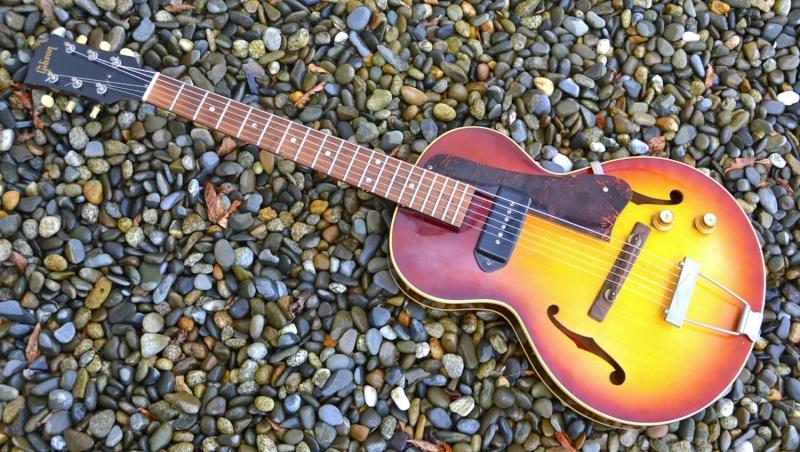 quelle guitare electrique pour le slide - Page 2 Dsc_0019