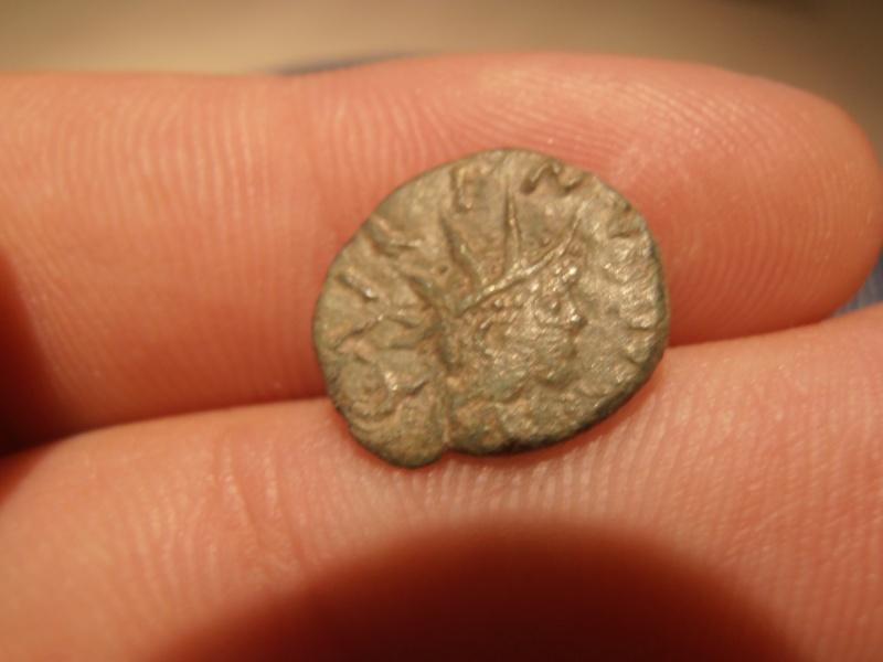 Imitation de romaine a identifier Pc290010