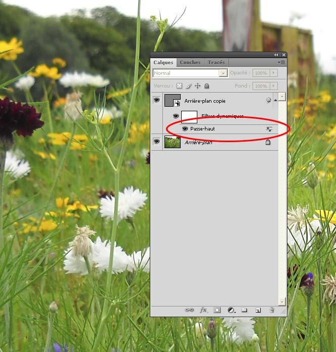 Améliorer la netteté d'une photo avec le Filtre Passe-Haut Pass-h10