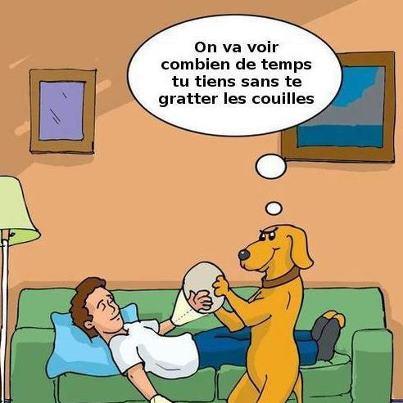 Humour en image - Page 5 67811_10
