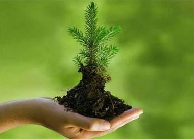 تعريف البيئة 86731f10