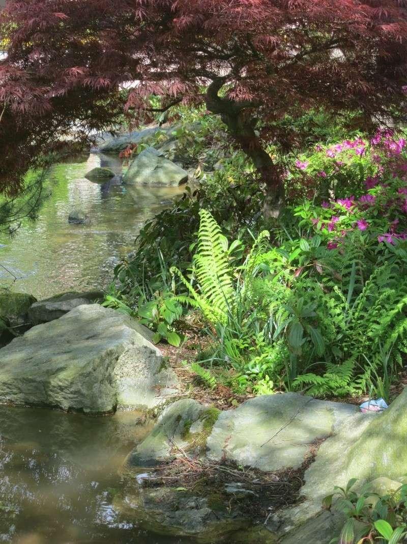 Les Jardins, Les Fleurs et l'Eau au DLP Img_0076
