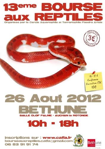 13eme bourse aux reptiles BETHUNE 20148b10