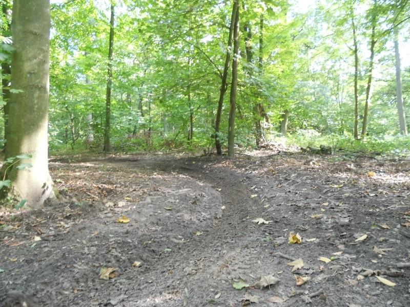 Enduro en Forêt d'Halatte Dscn0115