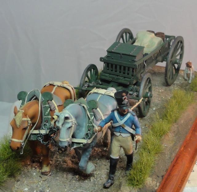 Trains d'artillerie ou des équipages? Dsc00926
