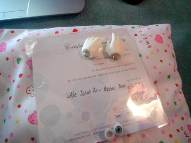 Little Riley Arrived (AiDolls Meoroo) Dscf3314