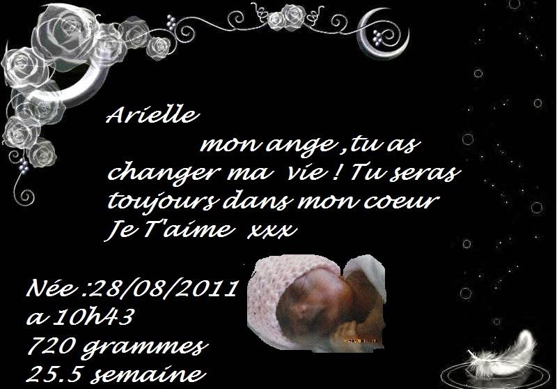 Mon ange parti trop tot Ariell14