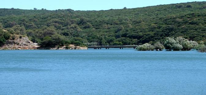 Lac de Carcès – Grand lac public – Var (83) Aa333
