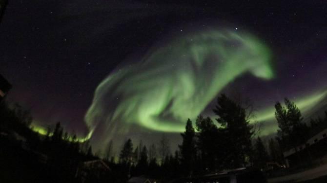Photographie d'un loup géant qui est apparu dans le ciel Wolfin10