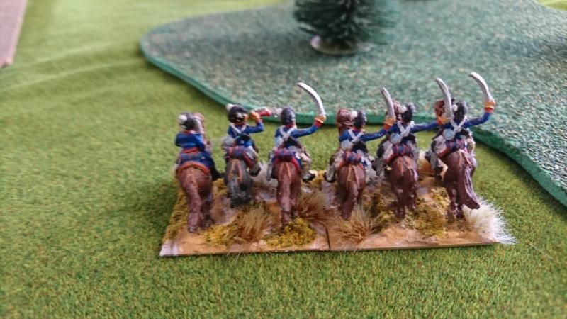 L'armée anglaise péninsule de Denis  Dsc_0513