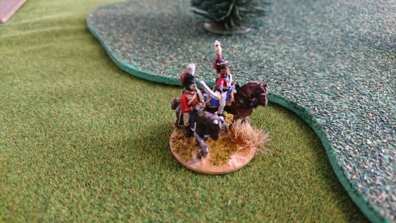 L'armée anglaise péninsule de Denis  Dsc_0515