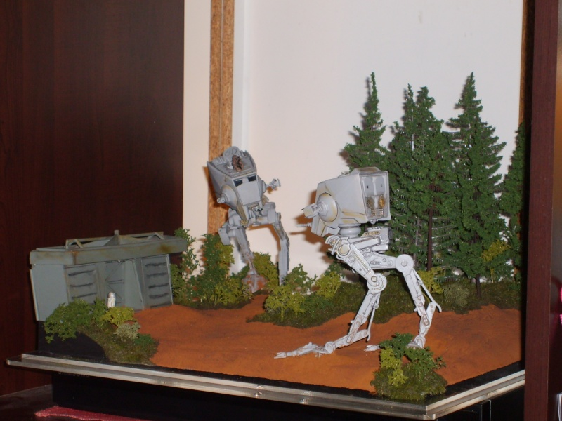 Diorama bataille d'Endor - Page 3 S5000048