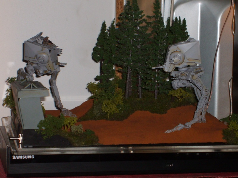Diorama bataille d'Endor - Page 3 S5000049