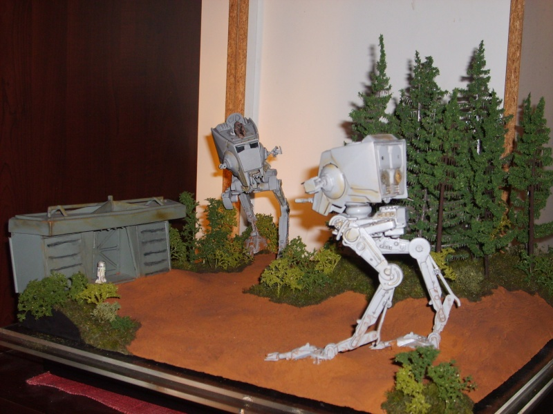 Diorama bataille d'Endor - Page 3 S5000050