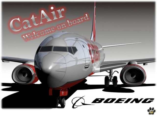 CATAIR.737.homecockpit