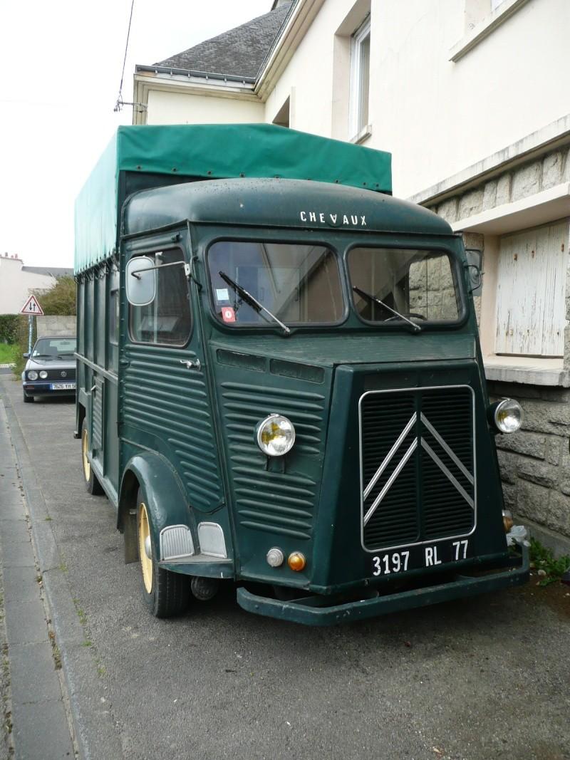 Présentation : 1954 transport de chevaux P1170910