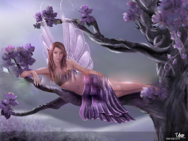 bon anniversaire violette - Page 2 Fae_da10