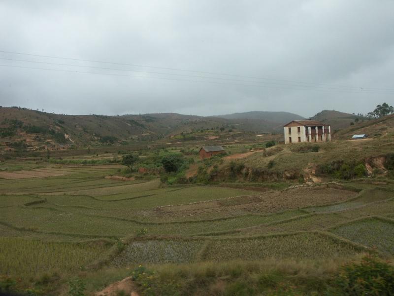 Madagascar 00911