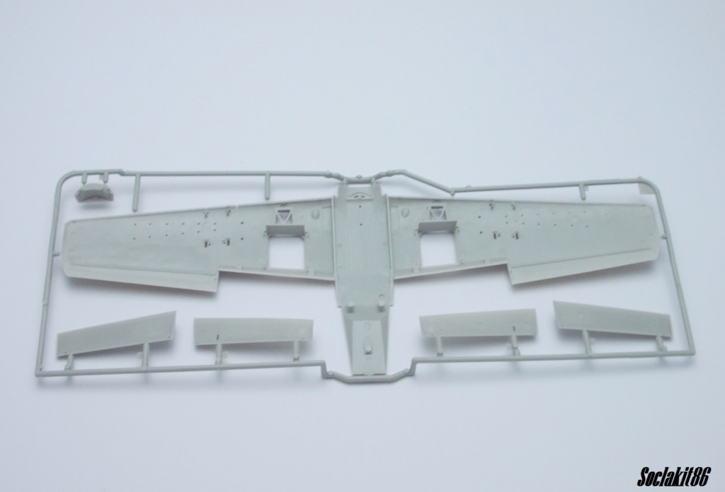 AD-4 Skyraider n°123895 /SFERMA 110 de l'EC 3/20  (Tamiya 1/48) 0225
