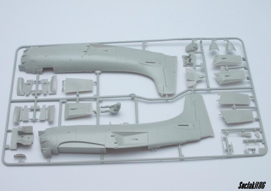 AD-4 Skyraider n°123895 /SFERMA 110 de l'EC 3/20  (Tamiya 1/48) 0727