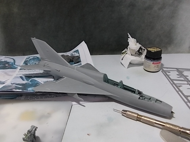 MiG-21 UM  Mongol B (Trumpeter 1/48)  1611
