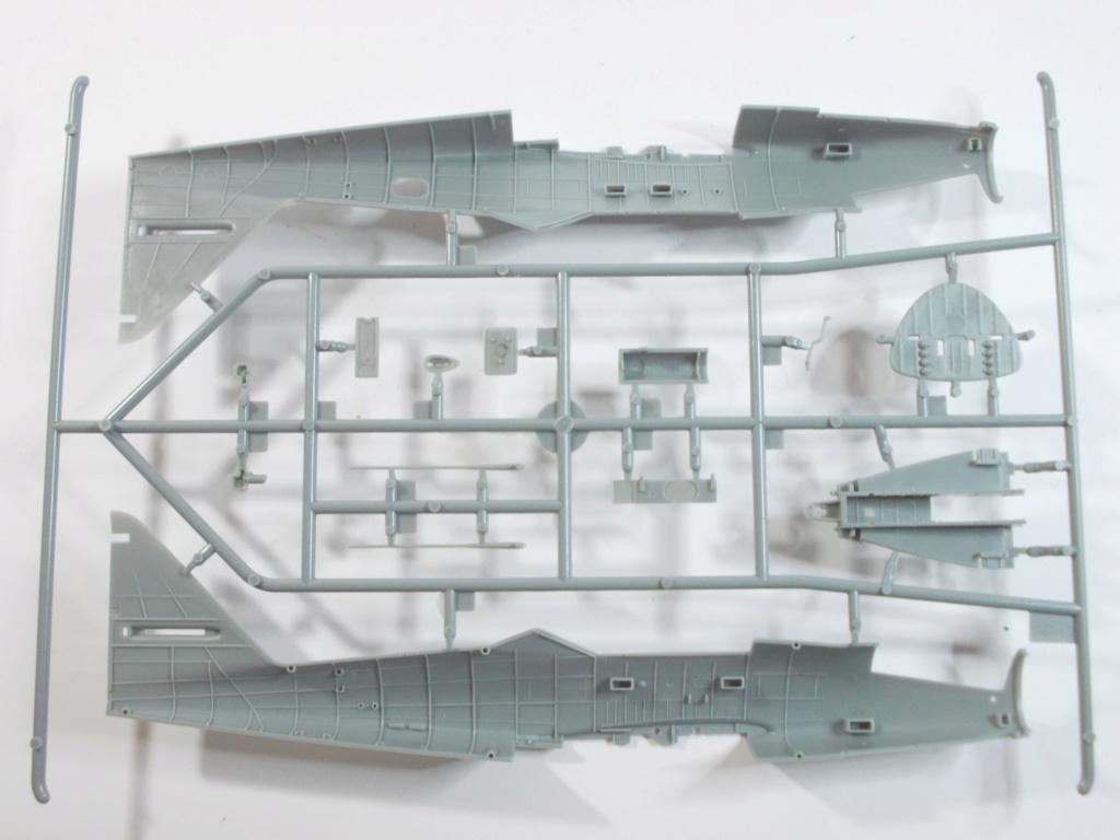 Me 262 A-2a/U2 au 1/48 ( Dragon 5529 versus Hobby Boss 80377 ) Dscn0175
