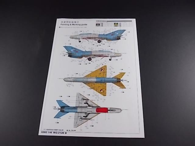 MiG-21 UM  Mongol B (Trumpeter 1/48)  Dscn1111