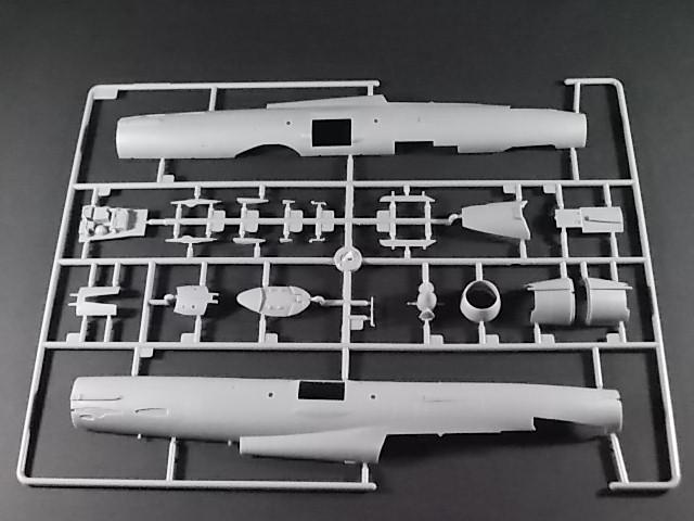 MiG-21 UM  Mongol B (Trumpeter 1/48)  Dscn1118
