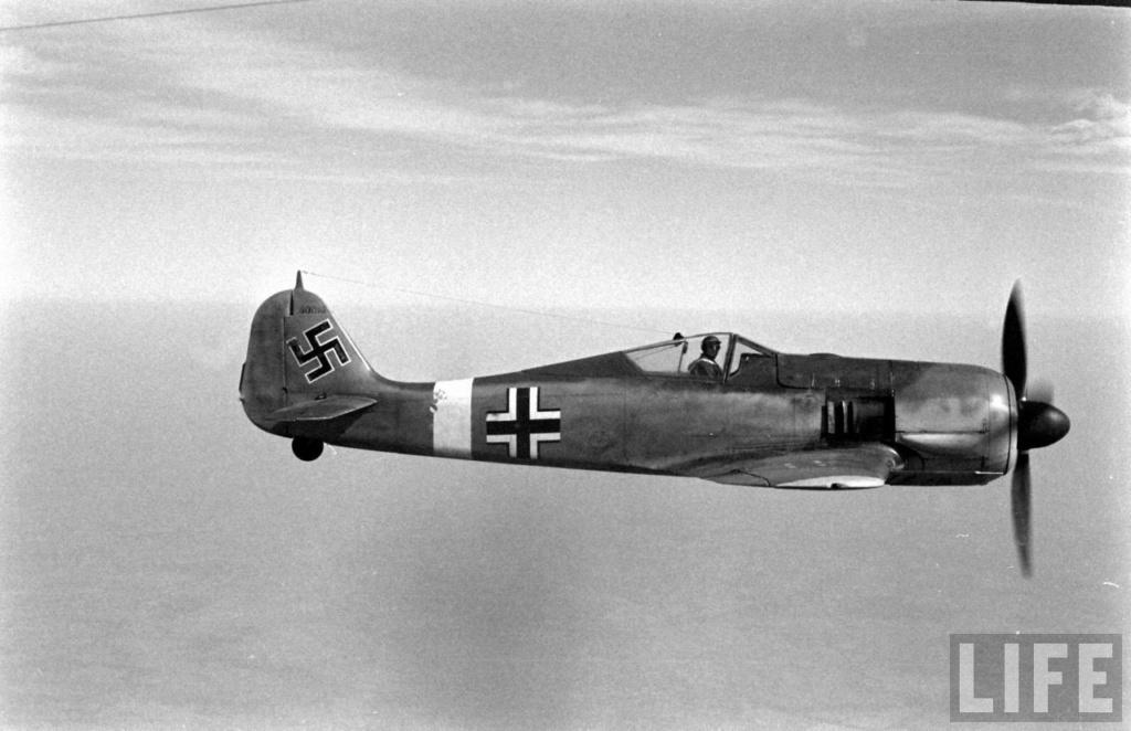 """FW 190 A-5 codé D5 + XV du 10/NJG-3 """"Nachtjagdkommando 190"""" (Eduard 1/48) Focke-21"""