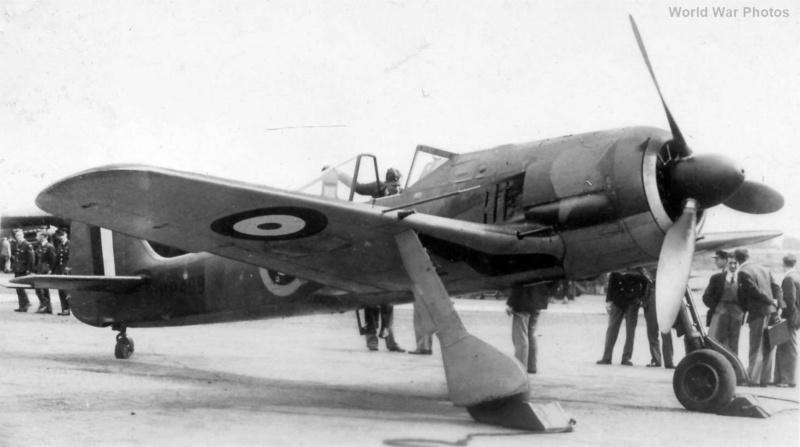 FW 190A-3 W.Nr. 135313 du III/JG-2 aux couleurs de la RAF été 1942 Fw190_10