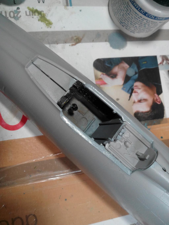 N.A. F-100 D Super Sabre (Trumpeter 1/48 ) Img_2027