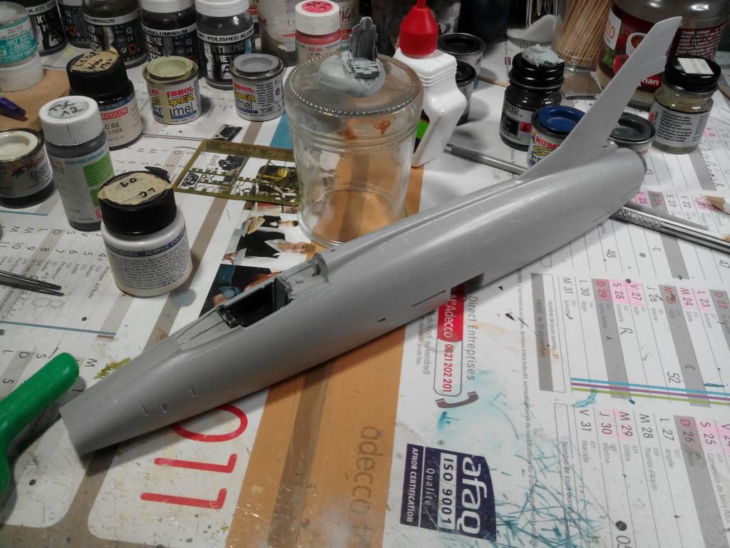 N.A. F-100 D Super Sabre (Trumpeter 1/48 ) Img_2028