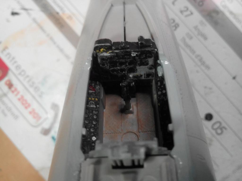 N.A. F-100 D Super Sabre (Trumpeter 1/48 ) Img_2032